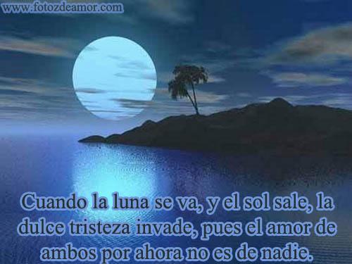 Todo En Frases: Frase Con Imagen La Luna Brilla