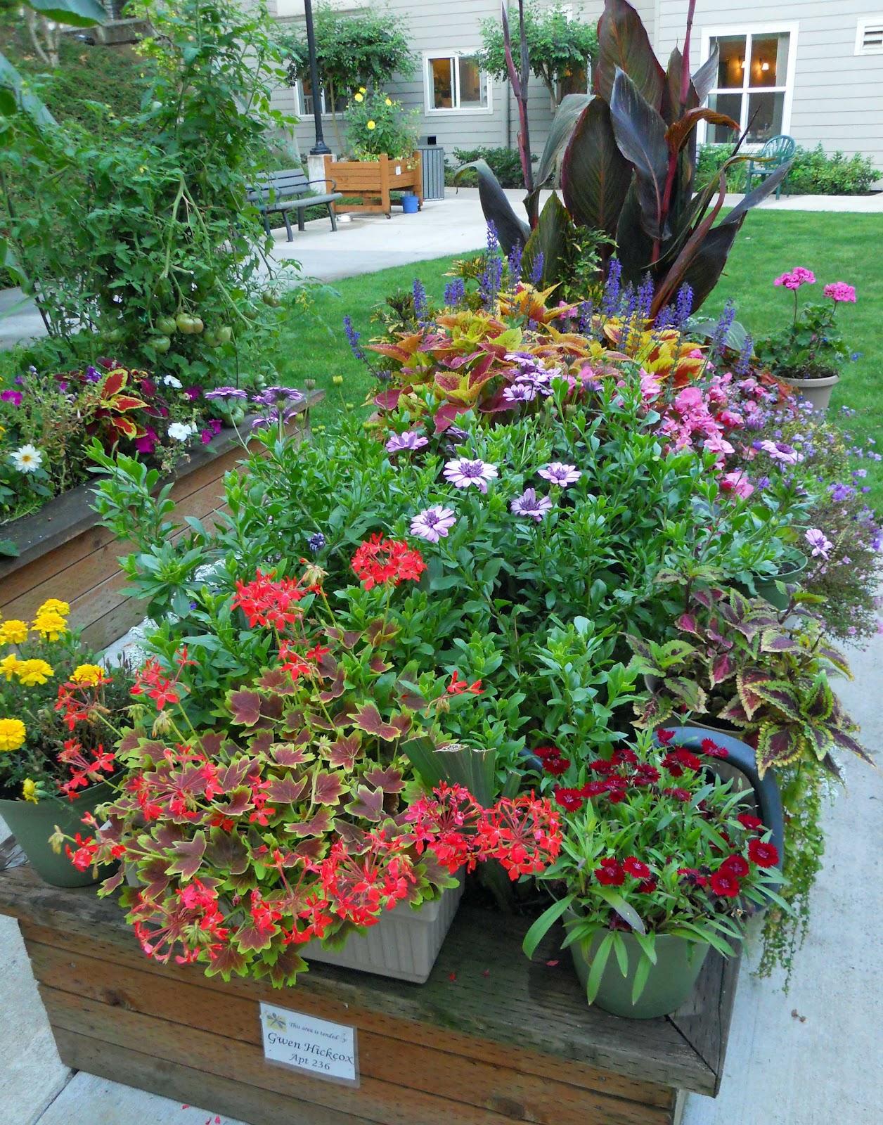 Beech Street Gardens: Raised Flower Bed By Gwen