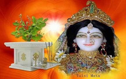 Shri Tulsi Chalisa
