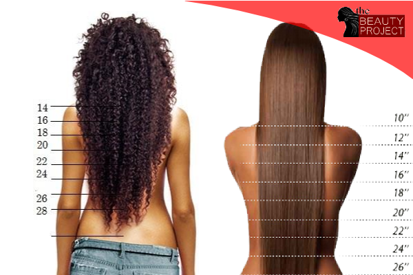Well we  ve attached  great chart comparison of kinky curly and straight hair to give you an indication what consider for example client who also the beauty project cayman smart buys understanding bundle rh kybeautyprojectspot