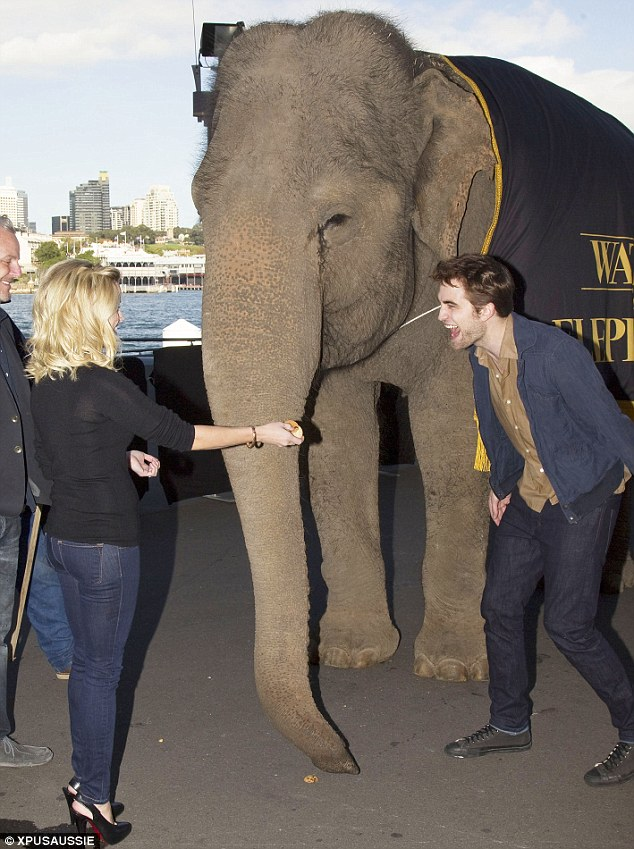 Who invited the elephant? Robert Pattinson and Reese Witherspoon upstaged by wrinkly star at Sydney premiere