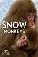Watch Nature: Snow Monkeys Online Free in HD