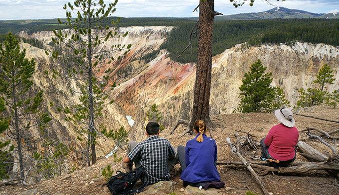 Amazingexplore Capture Overlook of the Grand Canyon of Yellowstone