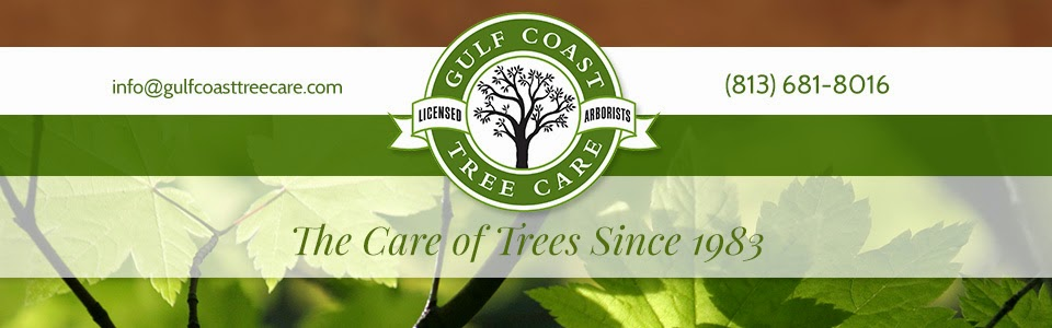 Gulf Coast Tree Care