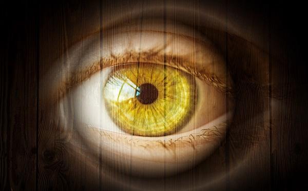 Optical Migraine