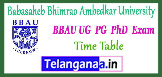 BBAU Babasaheb Bhimrao Ambedkar University Lucknow UG PG M.Phil PhD Counselling Time Table 2017