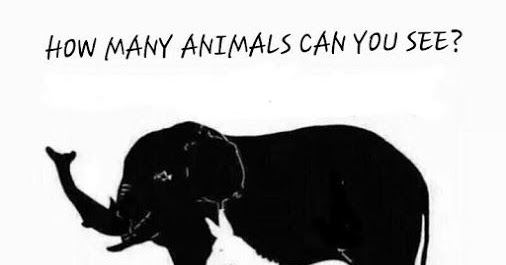 How many Animals can you see | Puzzles World