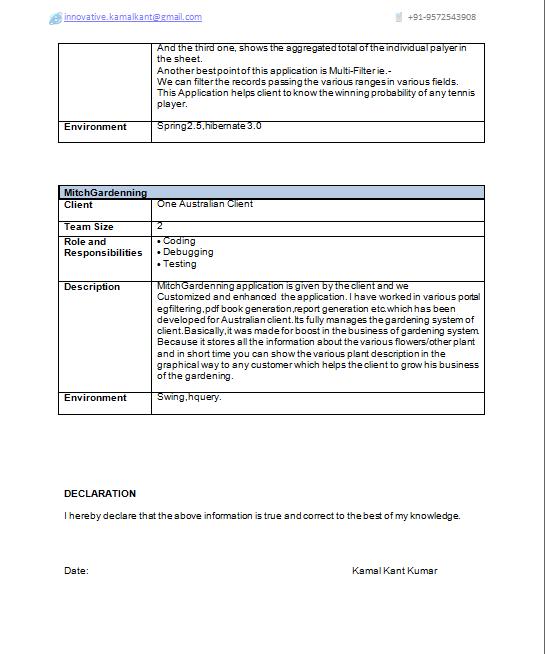 Senior J2ee Developer Resume Sample. j2ee resume example resume ...