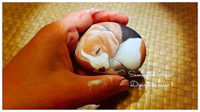Sassi dipinti cani beagle