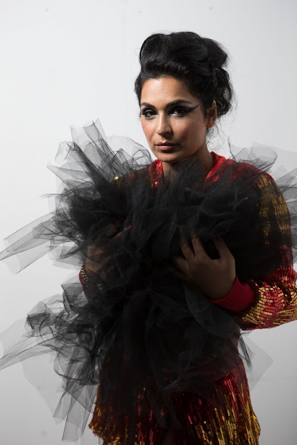 "Pakistani Actress Meera: it was a pure creative call, the makers thought of me to be apt to play the role"" says the beauty from the other side,"