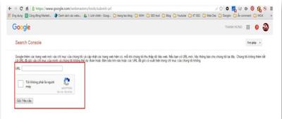 Khái quát về Submit URL Google trong seo offpage