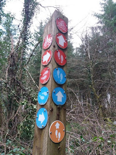 Post with walking and cycling signs leitrim