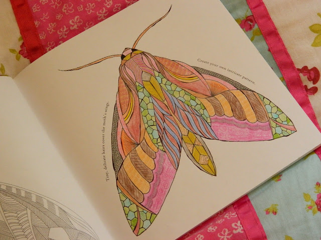 Animal Kingdom By Millie Marotta, Millie Marotta, Animal Colouring Books, Adult Colouring Books,