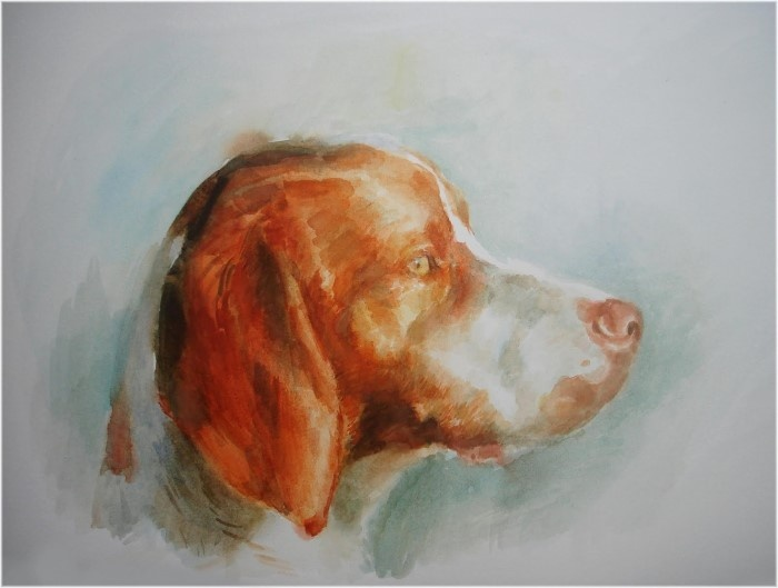 Южноафриканский художник. Thomasin Dewhurst