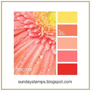 http://sundaystamps.blogspot.com/2017/08/ssc159-summer-petals.html