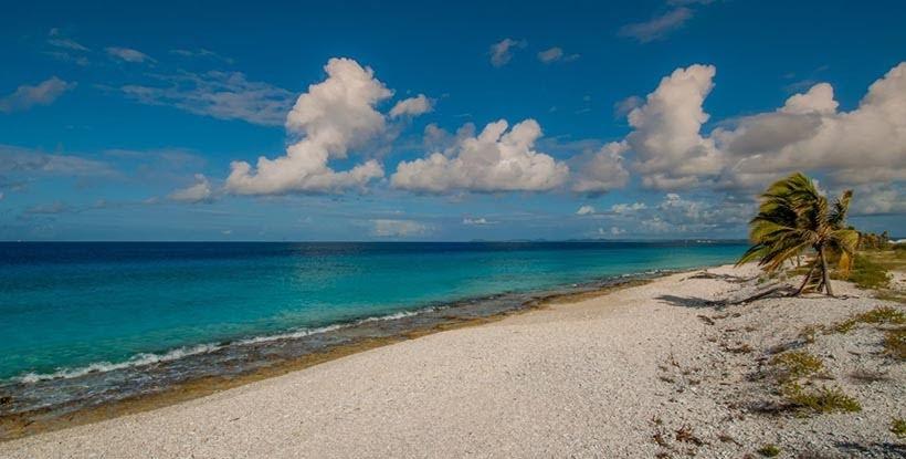 Pink Beach - praias de Bonaire