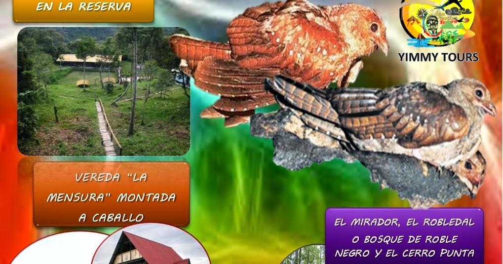 Parque natural cueva de los guacharos turismo en el - Agencia de viajes diana garzon ...