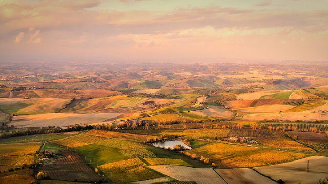 Things to do in Tuscany Like a Local