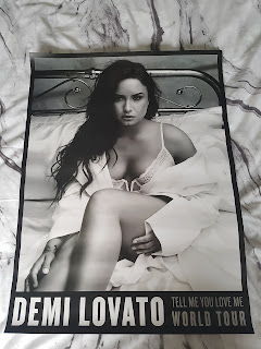 Demi lovato tour merch