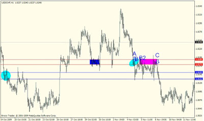 Forex Supply and Demand: The Wild
