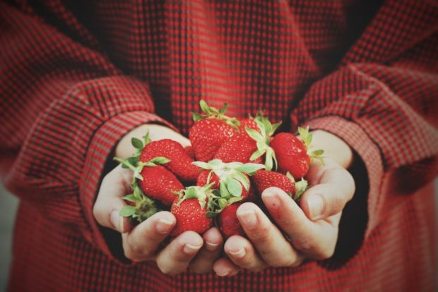 """Why are strawberries healthy? There is a long list of health benefits of strawberries. The strawberry is widely known as """"the queen of fruits' in most Asian nations since it is full of impressive health benefits. There is a number of vitamins and minerals in strawberries. Due to the juicy heart-shaped delights have much more to offer than sweetness and flavor, strawberries, are a power food."""