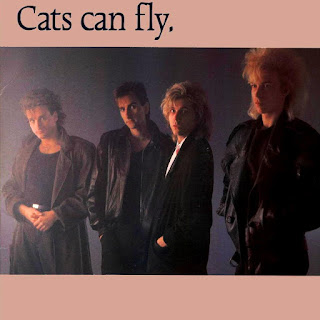 Cats can fly [st - 1986] aor melodic rock music blogspot full albums bands lyrics