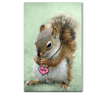 Hugs and kisses Valentine's Day Squirrel Greeting Card. You can purchase and download our photography creations and instantly print at home from our Paper Meadows Photography Shop on ETSY. To Visit our shop now click here.