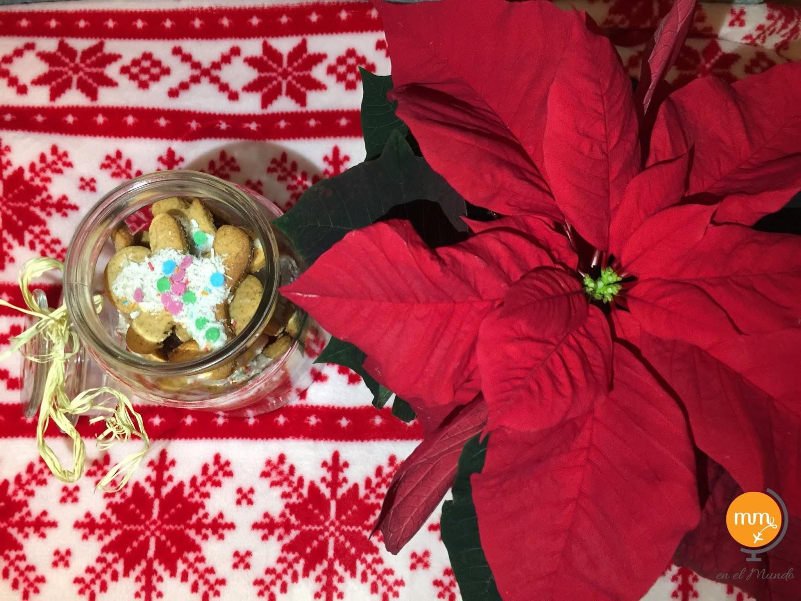 Gwiazda Betlejemska świąteczny symbol prosto z Meksyku!
