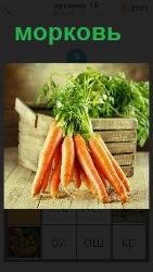 460 слов 4 около ящика лежит пучок большой моркови 19 уровень