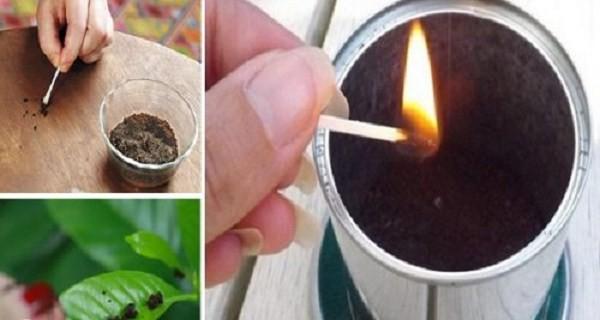burning coffee, mosquito repellent