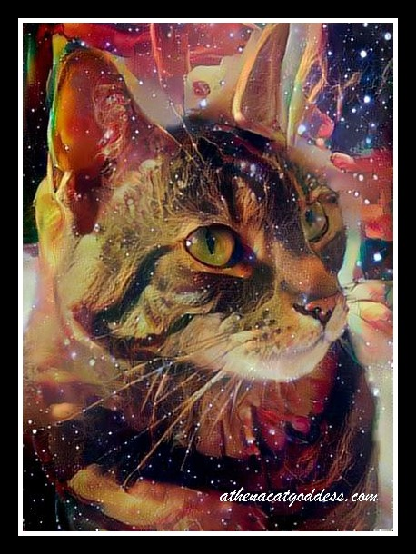 Caturday Art in Space