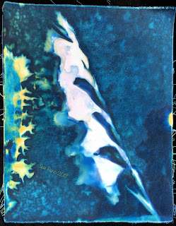 Wet Cyanotype_Sue Reno_Image 148