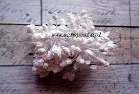 http://scrapcafe.pl/pl/p/Preciki-do-kwiatkow-biale/175