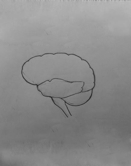 DRAW IT NEAT : How to draw human brain