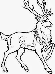 Christmas Reindeer Coloring Pages 1