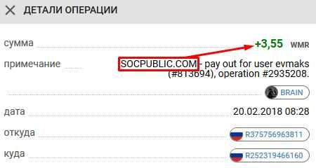 Платящий русский букс Socpublic