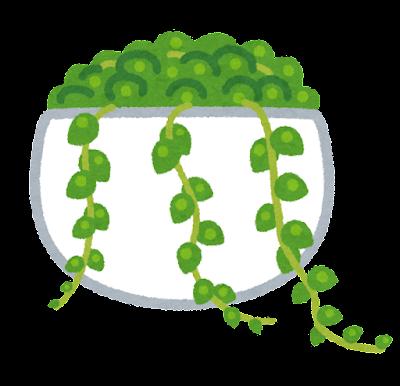 グリーンネックレスのイラスト(観葉植物)