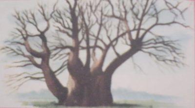 Ilustración del castaño de los cien caballos
