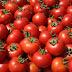 Κατασχέθηκαν 12 τόνοι ντομάτας... αγνώστου προελεύσεως