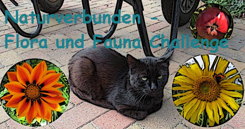 http://claudes-schatzkiste.blogspot.de/2014/04/naturverbunden-flora-und-fauna-challenge.html