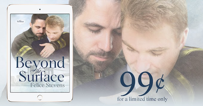 Beyond the Surface by Felice Stevens is only 99¢ for a Limited Time!!