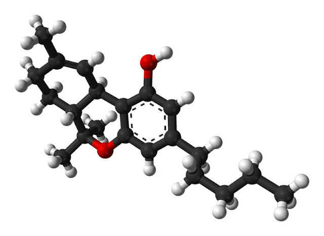 THC - Tetrahydrocannabinol is one of at least 113 cannabinoids identified in cannabis