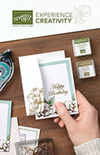 Stampin' Up! 2019 - 2020 Beginner Brochure
