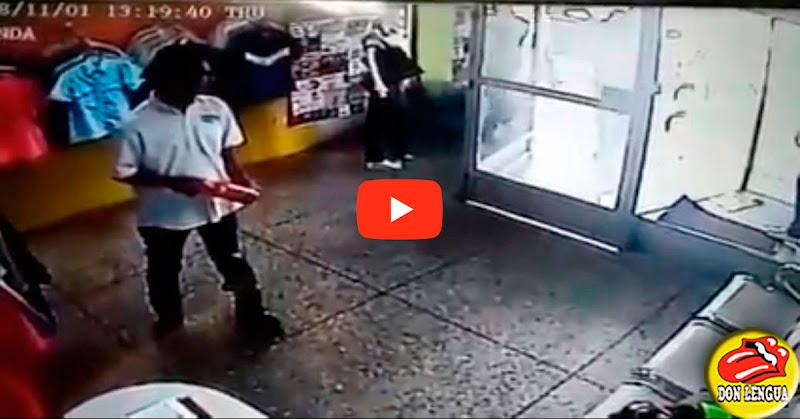 Choro solitario atracando de la avenida Las Ferias de Valencia queda grabado en este vídeo