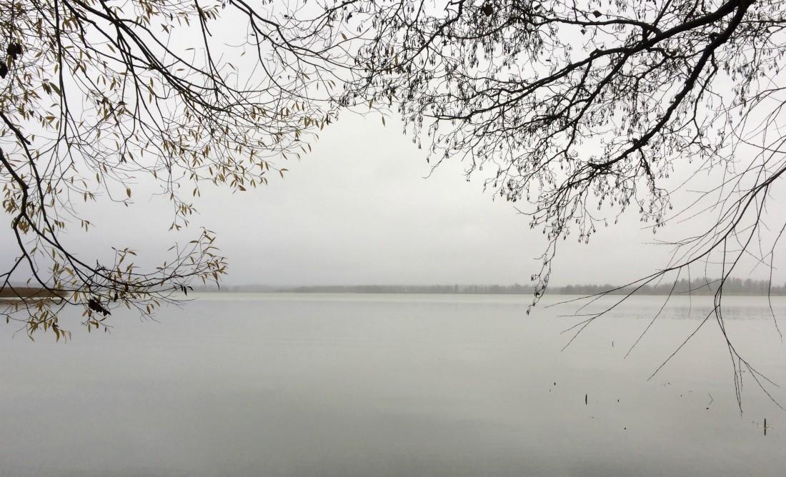 Tuusulanjärvi, Tuusulanjärven taiteilijayhteisö, suomen kielen asema, Rouva Sana, äidinkieli, kielellinen erityisvaikeus, suomen kieli