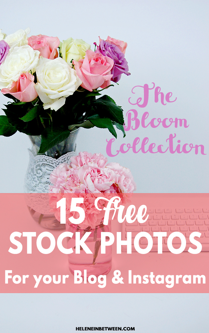 15 Free Stock Photos: The Bloom Collection