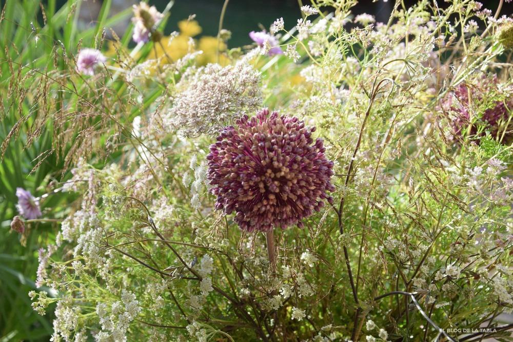 Allium ampeloprasum y otras silvestres en un arreglo floral