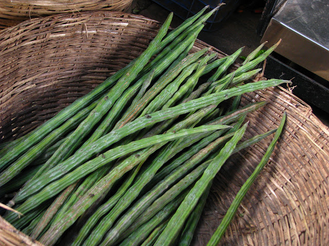 Drumstick - Xi Surprising Wellness Benefits In Addition To Drumstick Curry Recipe