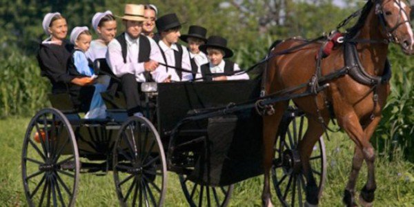 Amish live longer, healthier!