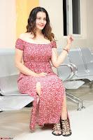 Diksha Panth in a Deep neck Short dress at Maya Mall pre release function ~ Celebrities Exclusive Galleries 067.JPG